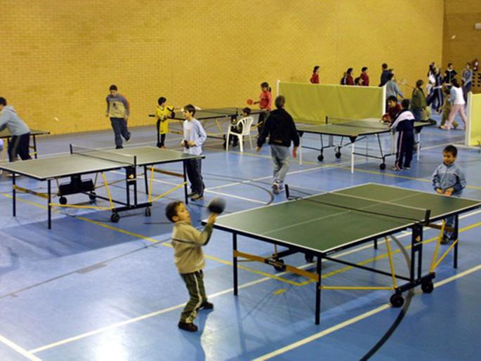 Infantilandia tenis de mesa for Madison tenis de mesa